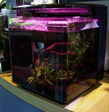 gex aquarie2