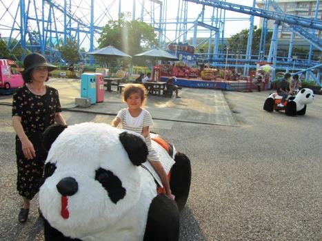 panda110823.jpg