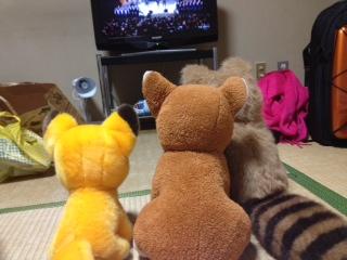 大晦日televisionを見る