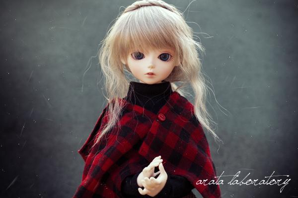 IMGP3750.jpg