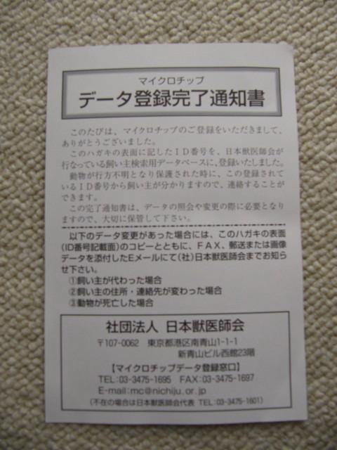 IMG_9862.jpg