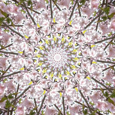 八王子パワーストーンスクール&ショップアロマヴァンヴェール・パワーストーンデザイナー養成講座・天然石手作り教室(マクラメ編み)-桜の万華鏡(曼荼羅)