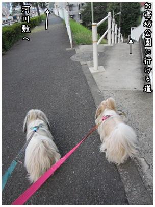 2011-08-24-07.jpg