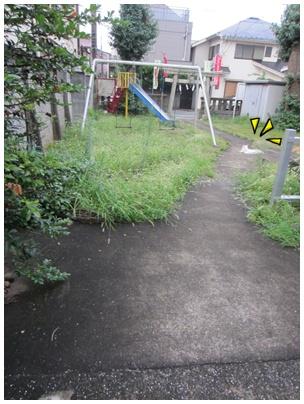 2011-09-01-08.jpg
