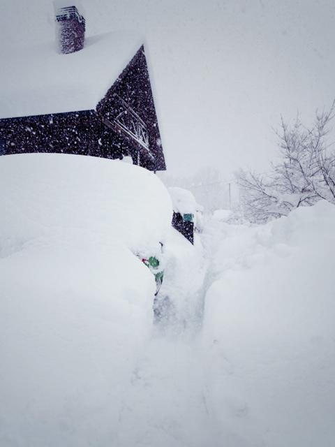大雪 ∑(゚∇゚|||)