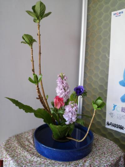 今週の花1