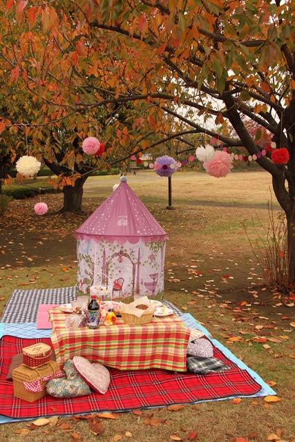 girls-picnic-1b.jpg