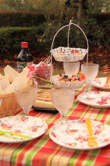 girls-picnic-1f.jpg
