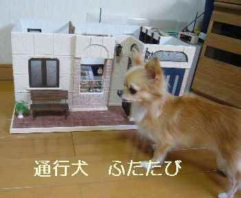blog2011091901.jpg