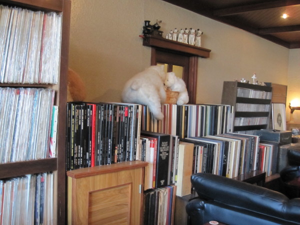 レコード棚2