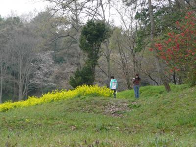 甘樫の丘⑥
