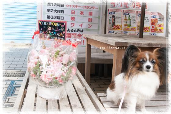 20140201_IMG_01.jpg