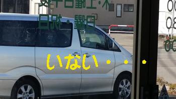 4_20141029182837208.jpg