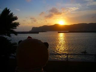 ばぶちゃん夕日を眺める