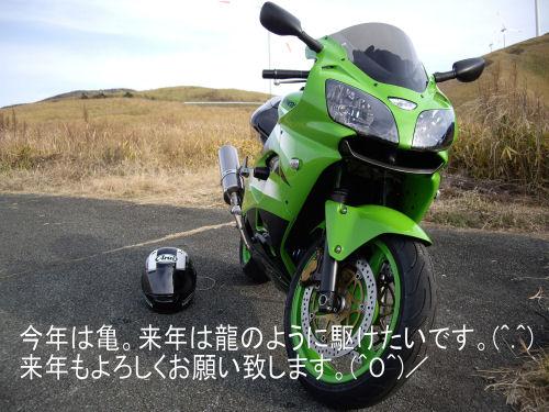 IMGP3296_1.jpg