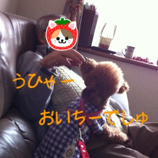 moblog_0f78b47c.jpg