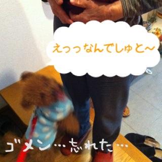 moblog_2954b440.jpg