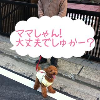 moblog_29604d54.jpg
