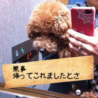 moblog_56faaa7c.jpg