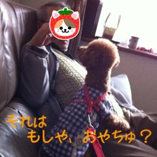 moblog_5c716d68.jpg