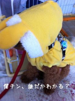 moblog_665e4e83.jpg