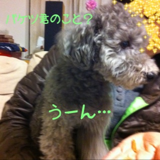 moblog_99b3b921.jpg