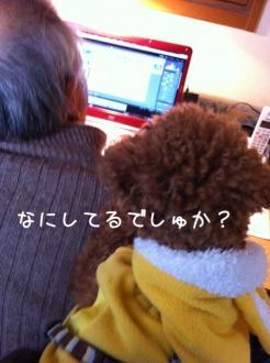 moblog_a2ccb8a8.jpg