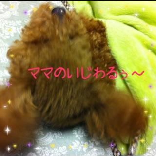 moblog_a9a68198.jpg