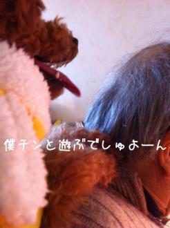 moblog_ed129240.jpg