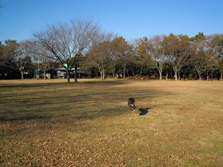 DSCN2250.jpg