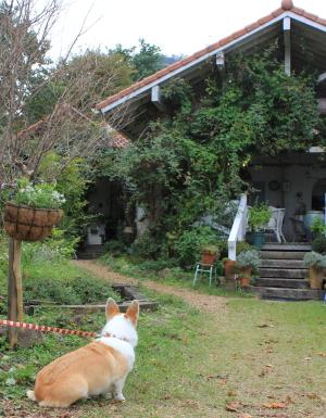 すてきなお庭とテラス席♪