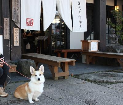 お蕎麦屋さんじゃなくて、小笠原さんの看板犬がいいの