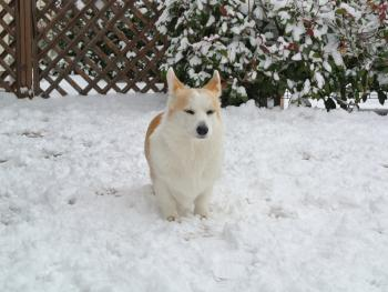 う~~、寒っ!