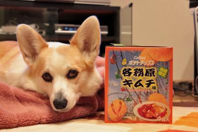 各務原キムチ味ポテト