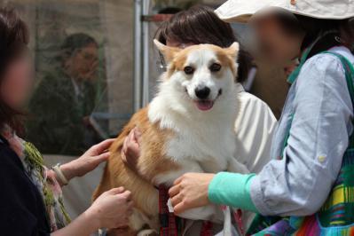 ハンサムなJuniorくんを抱っこしてニコニコの神戸のオバタン1号2号