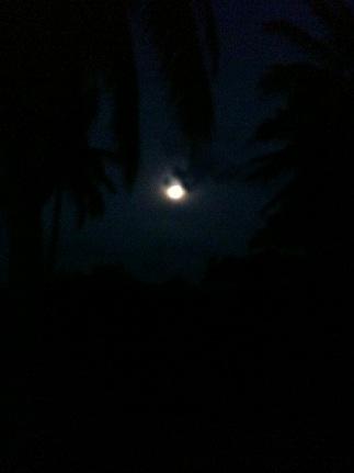 ビーチから満月