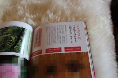 04_20120419095436.jpg