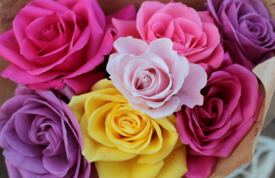 京成バラ園の花束