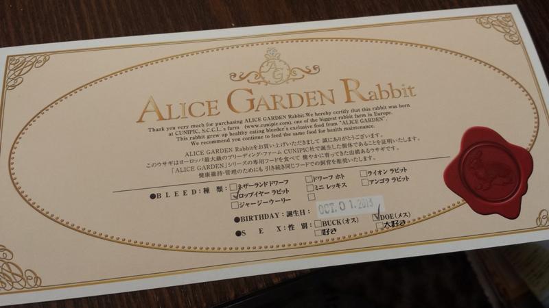 20131208_123130のコピー