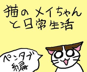 猫のメイちゃんと日常生活 テスト