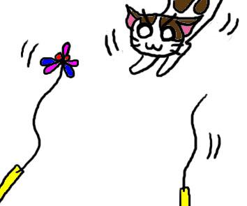 猫のメイちゃんと日常生活 テスト6