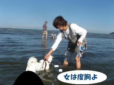 7561_convert_20110927222007.jpg