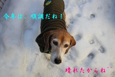 frida-20121229-oniwa02.jpg