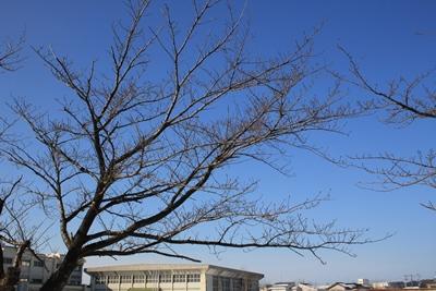 sky-20121229.jpg