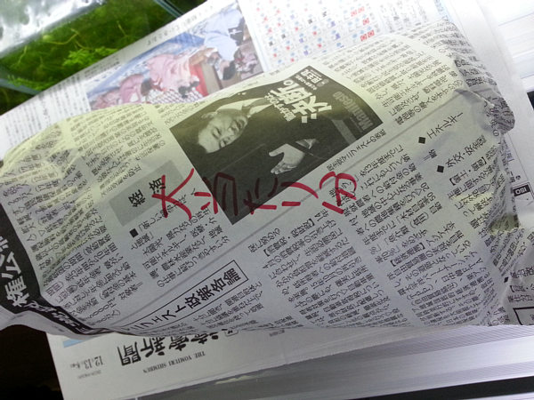 20121223_001.jpg