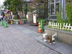 karuizawakankoukaikan1.jpg