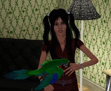 鳥に噛まれる