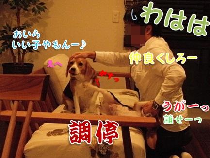 20110926_04.jpg