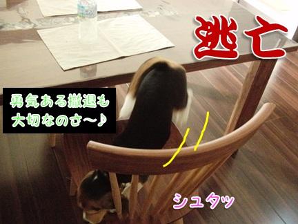 20110930_04.jpg