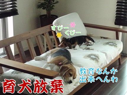 20110930_08.jpg